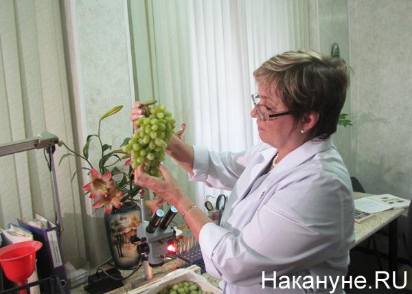 http://www.nakanune.ru/admin/images/pictures/image_big_68332.jpg