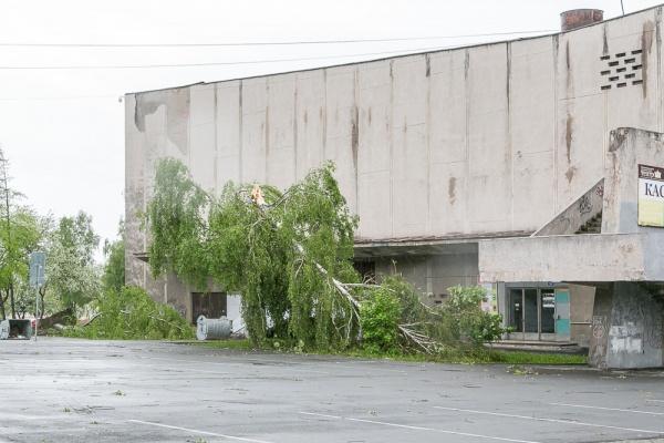 ураган в Нижнем Тагиле|Фото:ntagil.org/�лья Колесов