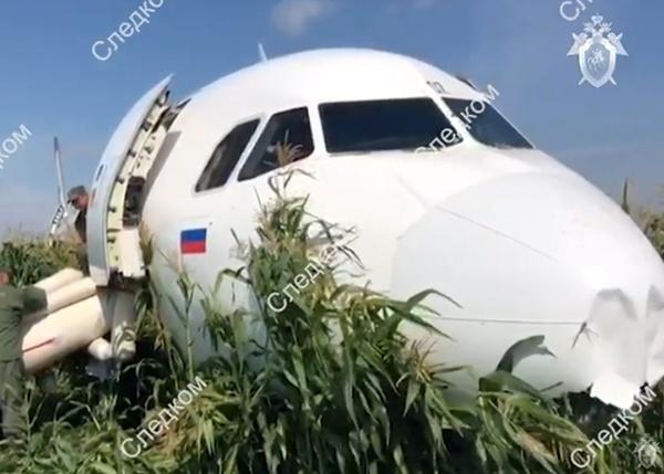 Airbus А321 Уральские авиалинии Фото:youtube.com Следственный комитет России