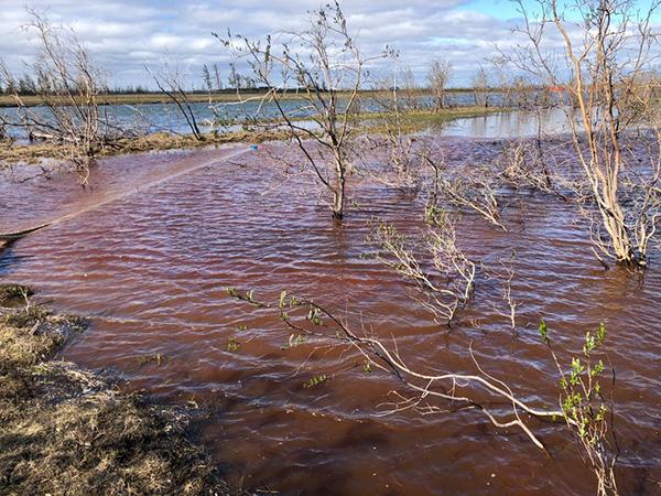 Горючее попало в воду рек Далдыкан и Амбарная (на фото), которая впадает в озеро Пясино Фото: Пресс-служба